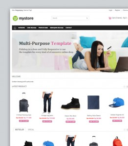 cms toko online